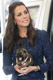 The Royal Tour — Now With Puppies and More George!