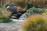 Unifying and Beautifying a Washington Island Landscape (12 photos)