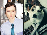 Ellen Page Is Renaming Her Fans's Dogs Now