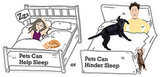 Do You Let Pets Sleep in Your Bed?