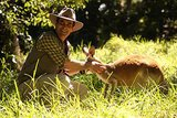 Phil meets a kangaroo. Source: Network Ten