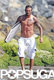 David showed off his toned, tan body on the beach in Malibu in August 2011.