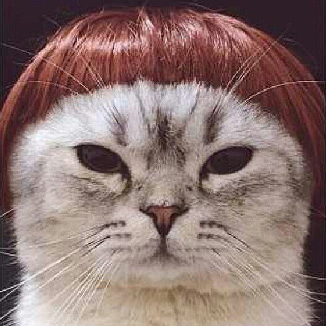 The Sharon Osbourne