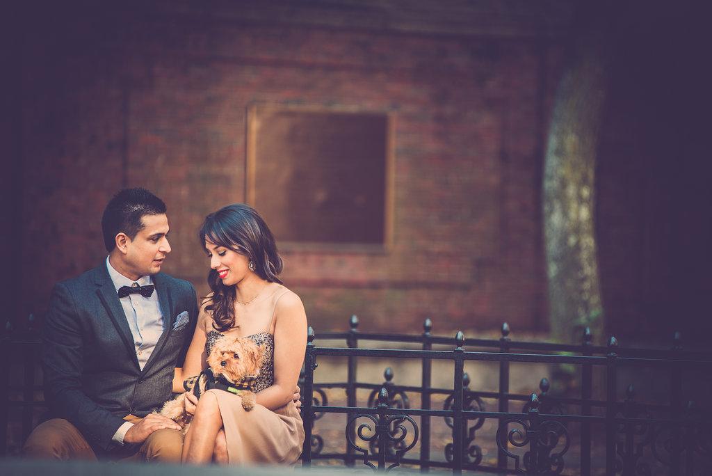 Puppy Makes 3: Ishani and Ritesh's Boston Engagement