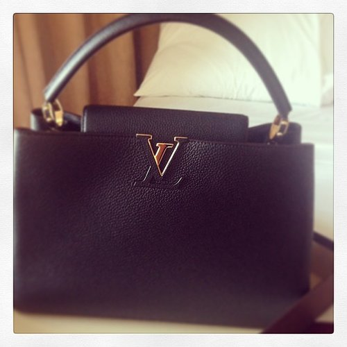 A Louis Vuitton Bag For a Bag Lover