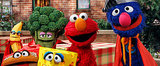 Guess the Sesame Street Celebrity Guest Star!