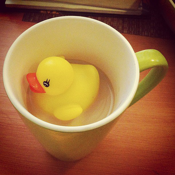 When He Thought Your Coffee Needed More Duck