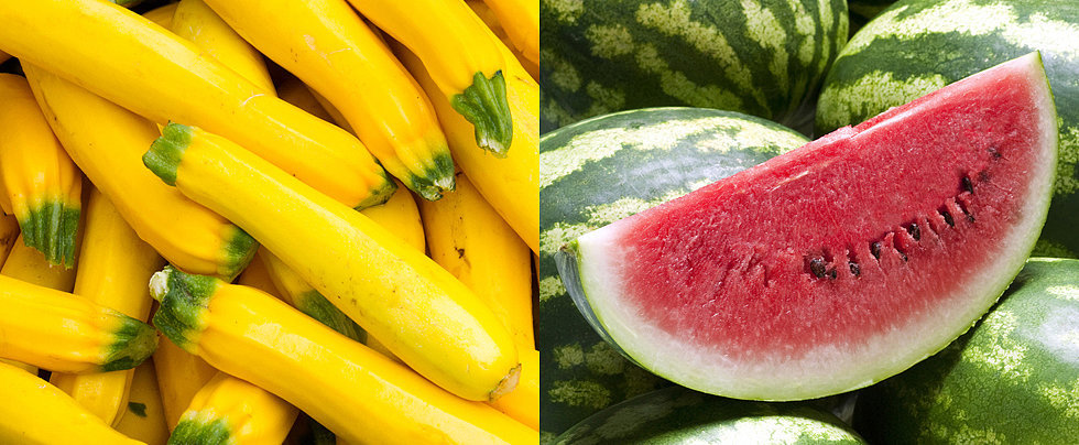 Your Ultimate Summer Produce Guide
