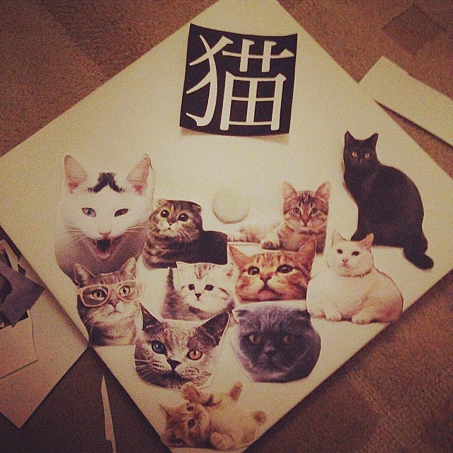 Cats because, duh.  Source: Instagram user passe_de_mode