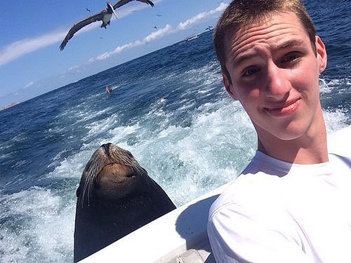 "Say ""Cheese and Seal"""