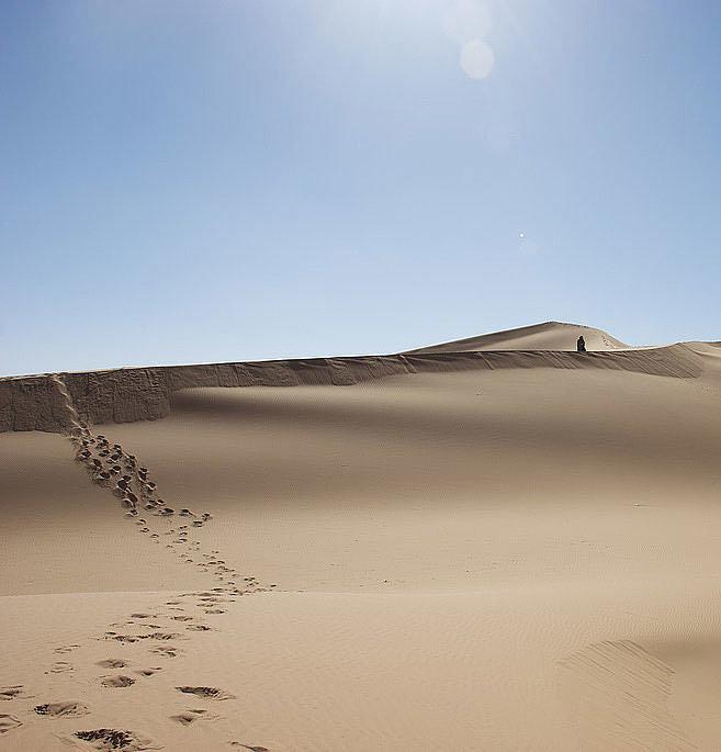 Sahara Dunes, Morocco