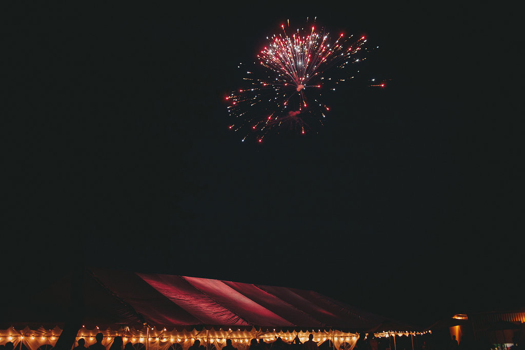 Fireworks lit up the sky over this Central California wedding. Photo by Jake and Necia