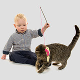 Cat Chores for Kids: A Great Way to Teach Responsibility
