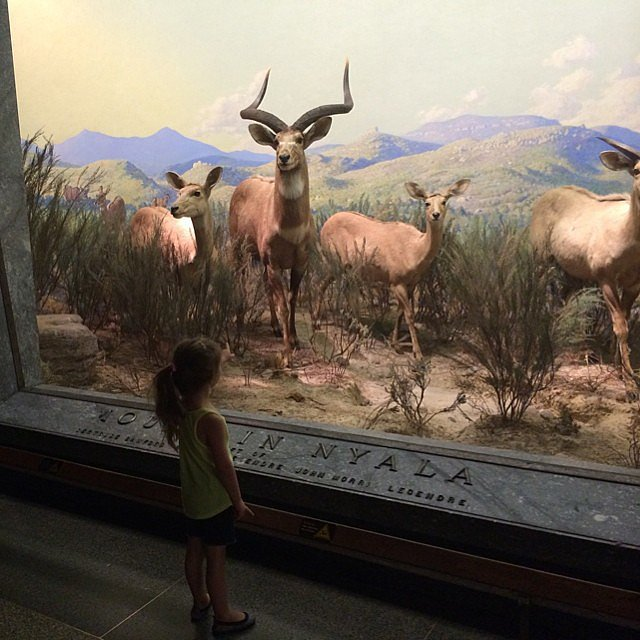 Harper Smith visited the American Museum of Natural History in NYC. Source: Instagram user tathiessen