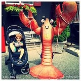 Brooks Stuber looked a little intimidated by the lobster Molly Sims found in New England. Source: Instagram user mollybsims