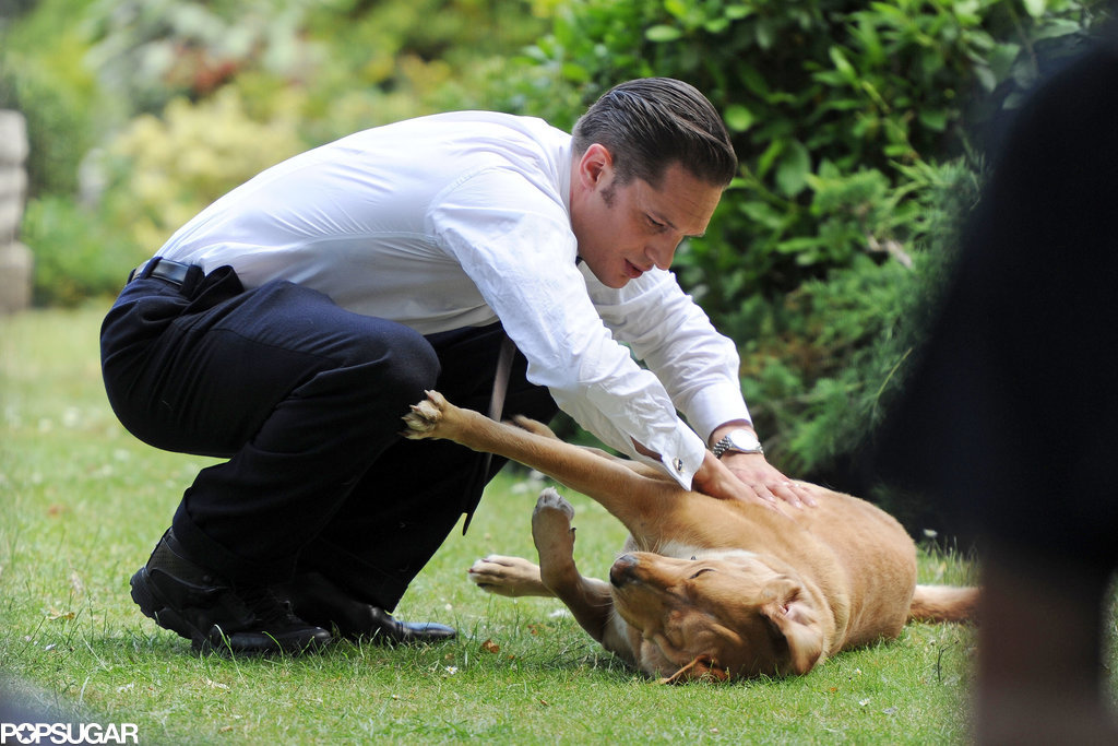 Tom Hardy Playing With a Puppy Is More Adorable Than You Ever Imagined