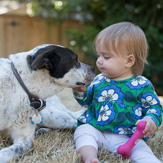 13 Adorable (and Accurate) Similarities Between Babies and Puppies