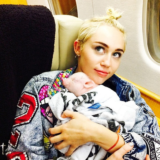Miley Cyrus Adopts a Pet Pig
