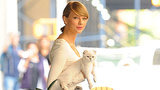 Taylor Swift Proves She is the Ultimate Cat Lady
