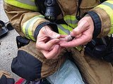 Firefighters Save Family of Hamsters by Using Tiny Oxygen Masks