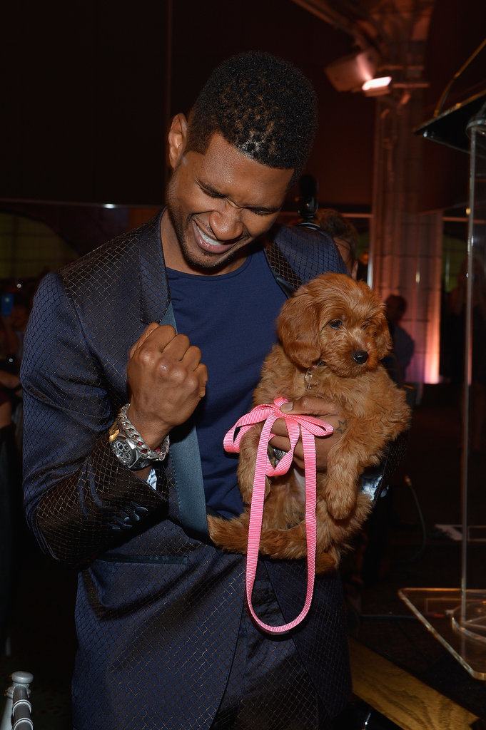 Usher famously bid $12,000 for a Goldendoodle puppy at the Pencils of Promise Gala in October 2012 — look how excited he was about his win!