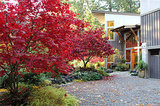 Houzz Call: Show Us Your Fall Color! (6 photos)