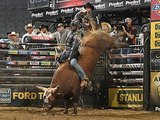 Why You Must Watch This Bucking Bull Before He Retires Sunday