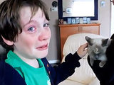 Ready the Tissues and Watch 2 Boys Tearfully Reunite with Their Missing Cat