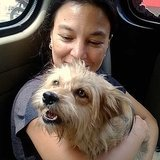 Meet Lisa, a Terrier Rescued From the Dog Meat Trade in Indonesia