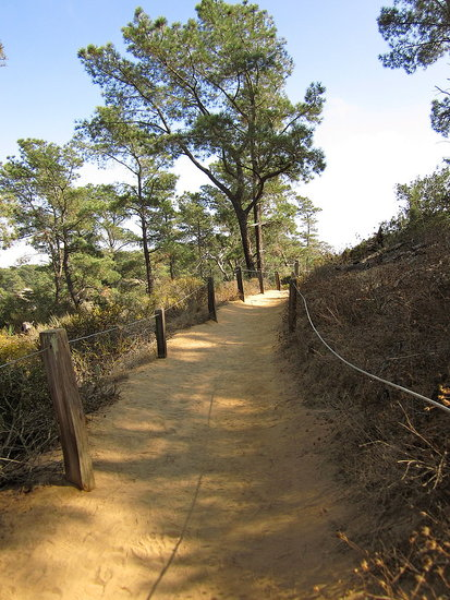 Hiking Trail at Torrey Pines