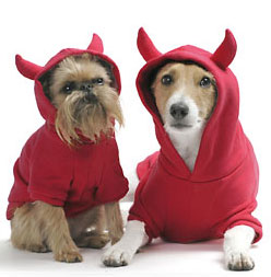 Howl-o-ween Hoodies For Year-Round Dress Up Fun