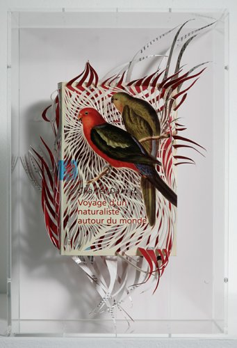 Artist Georgia Russell made this bird sculpture from a cut-book jacket.