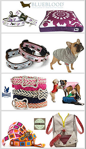 Who's Your Favorite Stylish Pet Designer?
