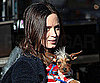 Slide Photo of Emily Blunt With Dog in NYC