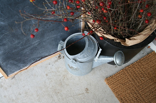 For the gardening gal, using simple elements like red-berried branches in a natural container and an old watering can sing Christmas in a country key.  Source:  Flickr User ali edwards