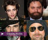 Celebrities With Beards