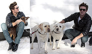 Photos of Zac Efron Playing With Puppies in the Snow