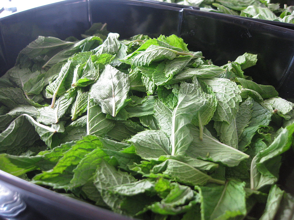Mint waiting to be muddled.