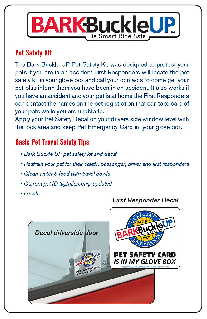 Photos of Bark Buckle Up Safety Kit