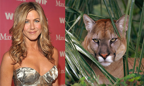 Jennifer Aniston to Play a Puma