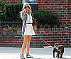 Slide Photo of Sienna Miller Talking on The Phone and Walking her Dog in NYC
