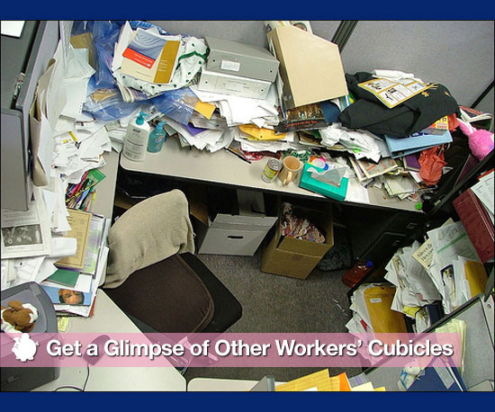 Get a Glimpse of Other Workers' Cubicles