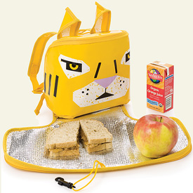 Eco-Friendly Lunch Bags