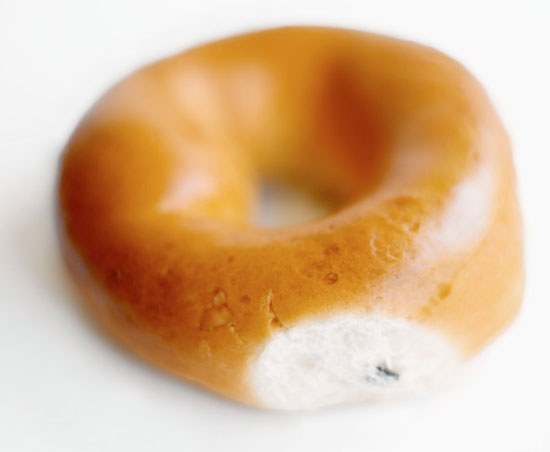 Frozen Mini Bagels