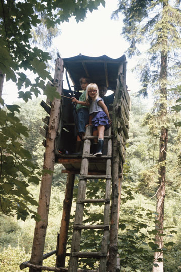 Guess Who Dreamt of Building a Grandiose Tree House?