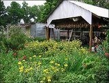 Boggy Creek Farm, Austin, TX