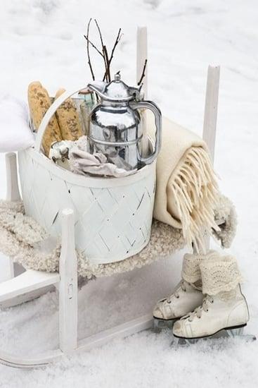 winter picnic inspiration