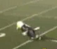 Mascot Falls While Running Across Field