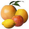 What's in Season: Citrus Is a Winter Fruit