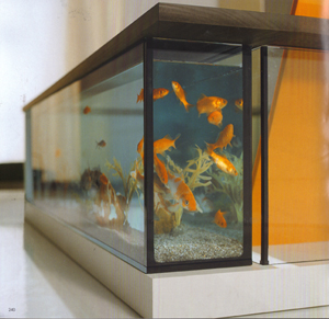Moody Acquario Has You Soaking Alongside Your Fish